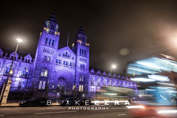 27.01.2016 Images from the G2 Summit Gala Dinner at the Natural History Museum. (C) Blake Ezra Photography 2016.