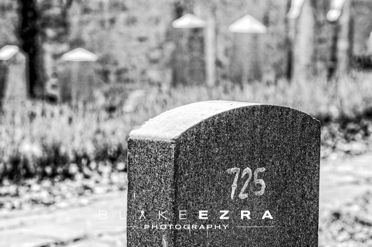 05.03.2014 © BLAKE-EZRA PHOTOGRAPHY LTD Images from Holocaust Education Trust's Lessons From Auschwitz trip, from Birmingham. © Blake-Ezra Photography Ltd. 2014
