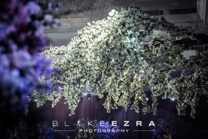 blake_ezra_ajblog_0312